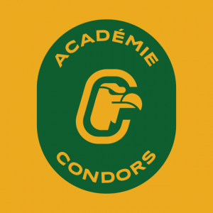 Badge Académie Condors