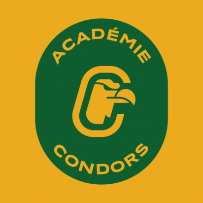 Badge Académie Condors