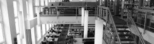 Photo de la bibliothèque Jean-Marie Derouin