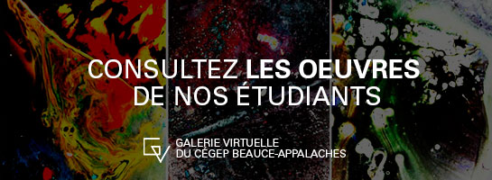 Photo galerie virtuelle